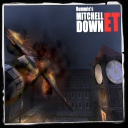 mitchelldown